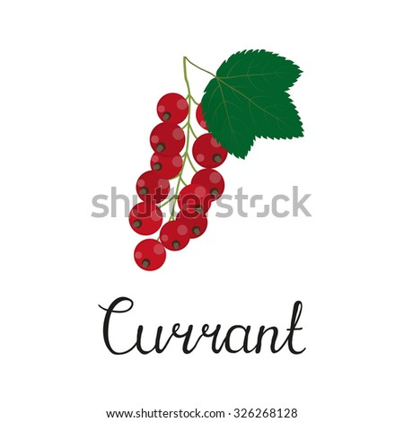 Redcurrant berries isolated on white background with lettering.