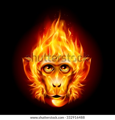 Redhead Fire Monkey isolated on black background - stock vector
