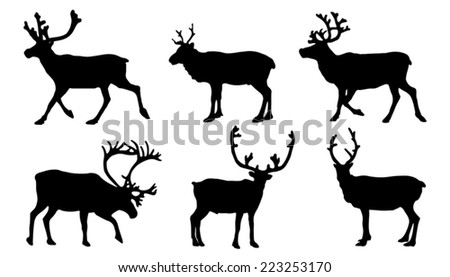 reindeer silhouettes on the white background - stock vector