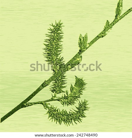 Relief of embossed blooming willow twig - stock vector