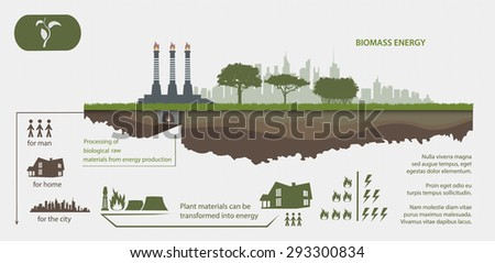 Renewable energy from biomass energy illustrated infographics - stock vector
