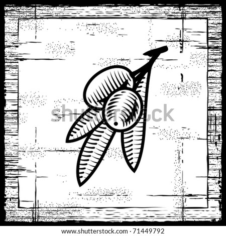 Retro olive branch black and white. Vector - stock vector