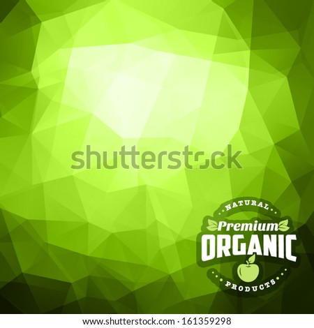 Retro vintage styled bio eco label of healthy organic natural farm fresh food on green triangles creative background pattern. Good as a template of corporate identity advertisement. - stock vector