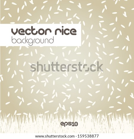 Rice background, vector