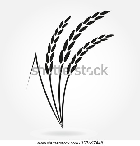 Rice. Crop symbol. Rice or Wheat ears design element. Agriculture grain. Vector illustration. - stock vector