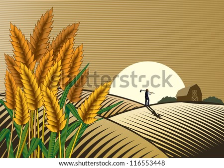 Rice field with a man walking at sunset. Woodcut - stock vector
