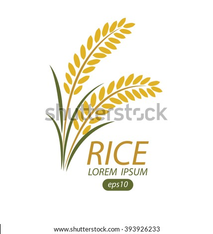 Rice Plant Stock Images, Royalty-Free Images & Vectors ...