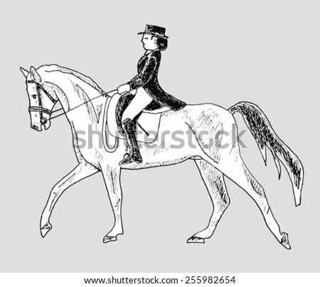 rider on the horse - hand-drawn illustration - stock vector