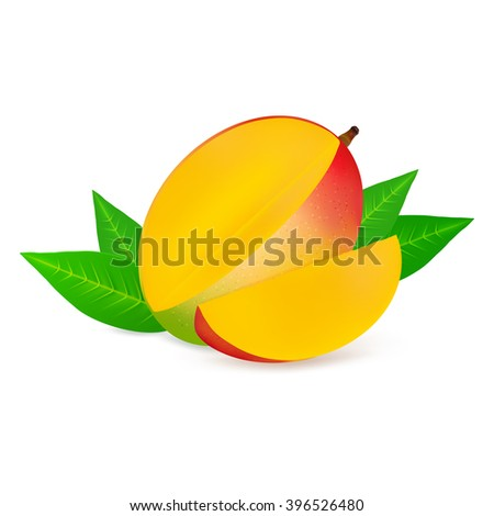 Ripe mango fruit with slice isolated on white background. Realistic vector illustration. - stock vector