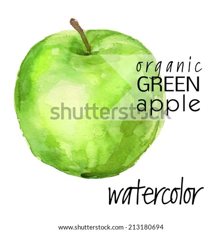 ripe picturesque (isolated on white background) green apple - brush and watercolor hand painted vector illustration - stock vector