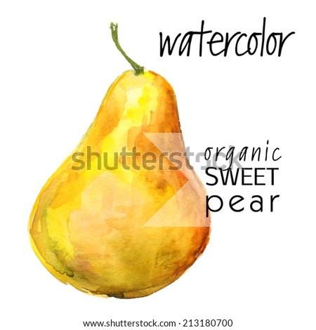 ripe picturesque (isolated on white background) yellow pear - brush and watercolor hand painted vector illustration