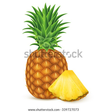 Ripe pineapple with slices isolated on white background. Vector illustration for decorative poster, emblem natural product, farmers market. Perfect for packaging design of cosmetics and food.
