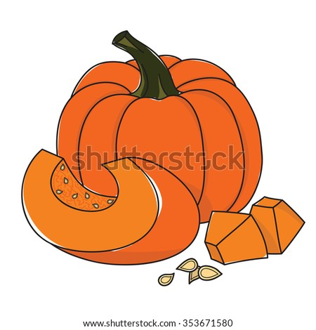 ripe pumpkin and pieces and seeds on a white background - stock vector