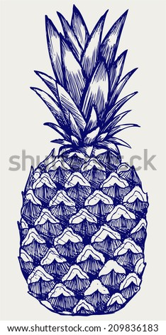 Ripe tasty pineapple. Doodle style