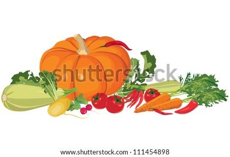Ripe vegetables. Still life with autumn abundance. - stock vector