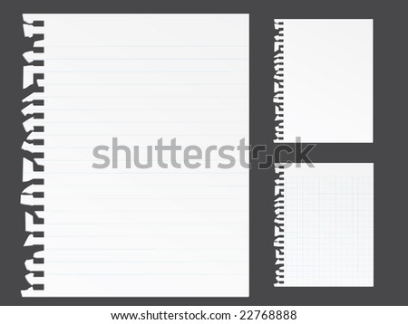 Ripped blank note paper