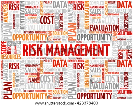 Risk Management word cloud, business concept - stock vector