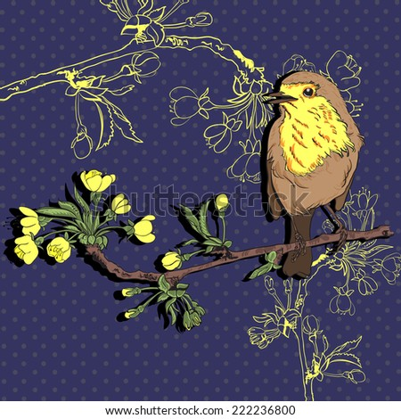 Robin bird that sits on a branch  - stock vector