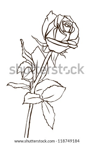 Rose Outline Stock Images, Royalty-Free Images & Vectors ...