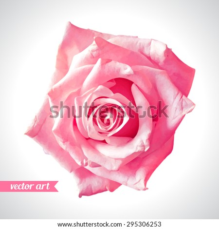 Rose close up. Vector art. Love concept for wedding invitations, cards, tickets, congratulations, branding, boutique logo, label. Red pink beige soft colors. Web, website and mobile interface