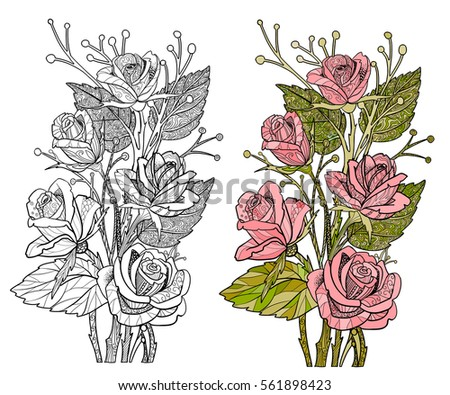 Rose Coloring Page Flower Doodle Style Stock Vector (Royalty Free ...