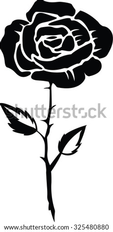 Rose illustration design
