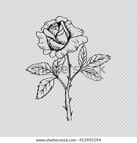 Rose. Sketchy style. - stock vector