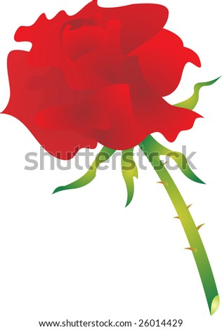 rose vector - stock vector