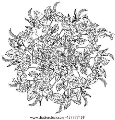 Roses Leaves Shape Mandala Old Masters Stock Photo (Photo, Vector ...