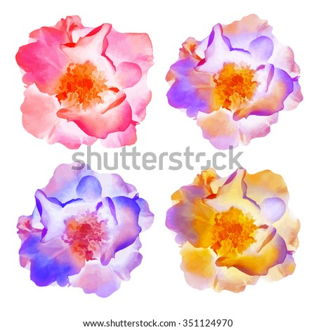 Roses flowers. Set of vector isolated illustration, EPS10. - stock vector
