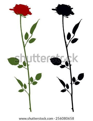 Roses on white - stock vector