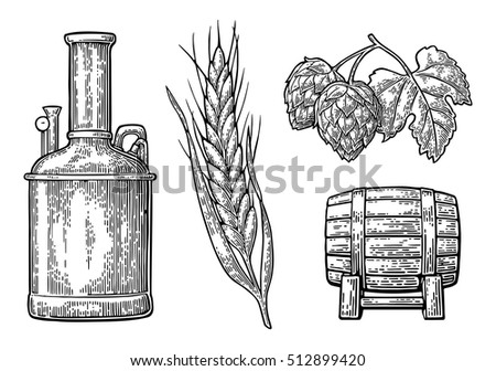 Row of tanks, hop branch with leaf, ear of barley and wooden barrel. For poster production process brewery beer. Isolated on white background. Vintage vector engraving illustration
