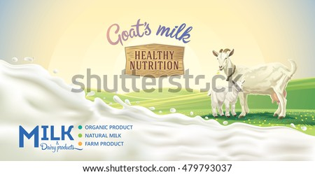 Rural landscape with goat and kid, splash of milk as a design element.