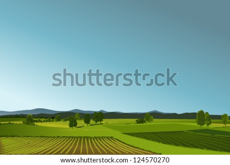 Rural landscape with green fields