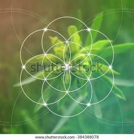 Sacred geometry. Mathematics, nature, and spirituality in nature. Fibonacci row. The formula of nature. The Eternity symbol and interlocking geometric shapes.  - stock vector