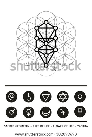 Sacred geometry tree life flower life stock vector 2018 302099693 sacred geometry tree of life flower of life yantra stock vector ccuart Choice Image