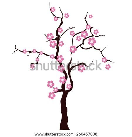 Sacura tree - stock vector