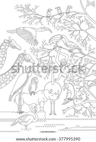 Safari animals and birds. Vector safari animals and birds in flat, lineal style. Safari animals and birds isolated, separately grouped. - stock vector