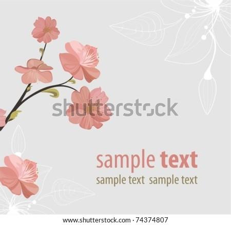 sakura. floral backgrounds - stock vector