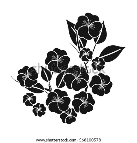 Cherry Blossom Vector Black And White Stock Images ...