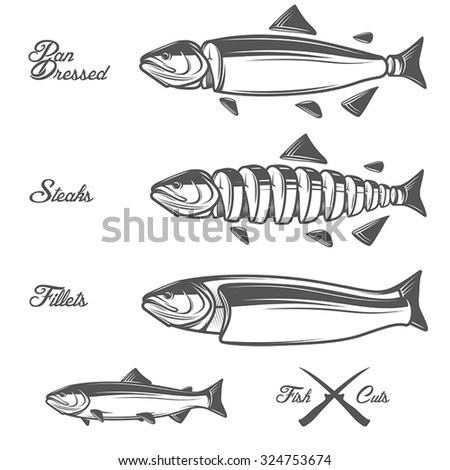 Salmon cuts diagram - whole fish, pan dressed, fillets and steaks - stock vector