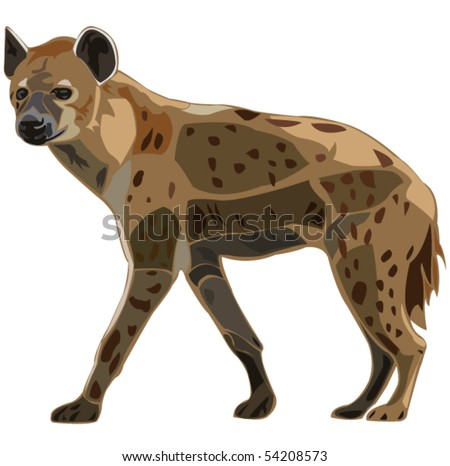 Scavenger on the African grasslands - spot hyena - stock vector