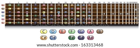 Schematic view of a guitar fretboard with each note.