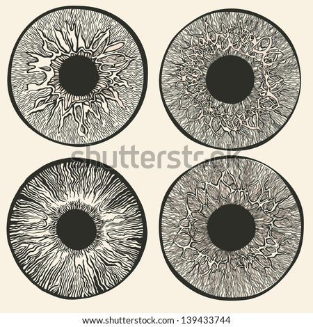 Science of the human eye. - stock vector