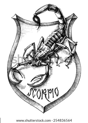 Scorpion heraldry scorpio zodiacal sign - stock vector