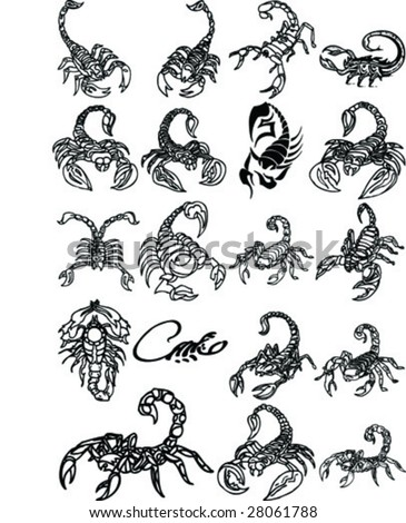 scorpions Collection - stock vector