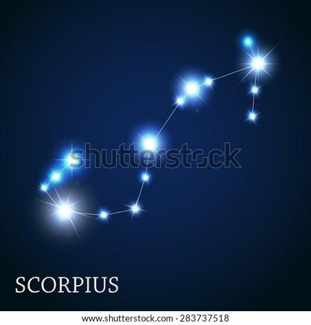 Scorpius Zodiac Sign of the Beautiful Bright Stars Vector Illustration EPS10 - stock vector