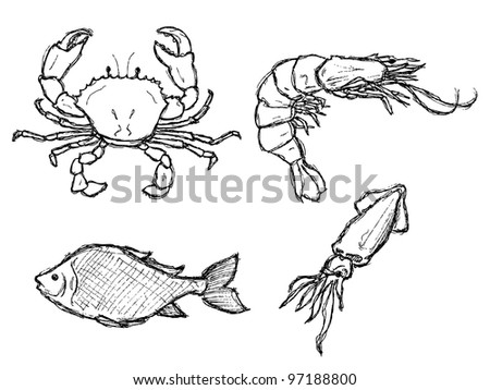 scribble series - seafood - stock vector