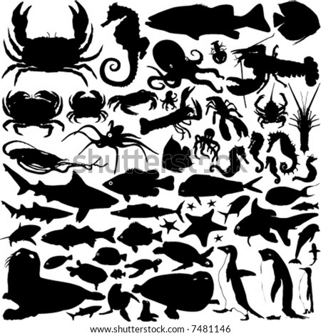 sea animals vector - stock vector