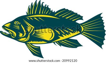 Sea bass side view profile - stock vector